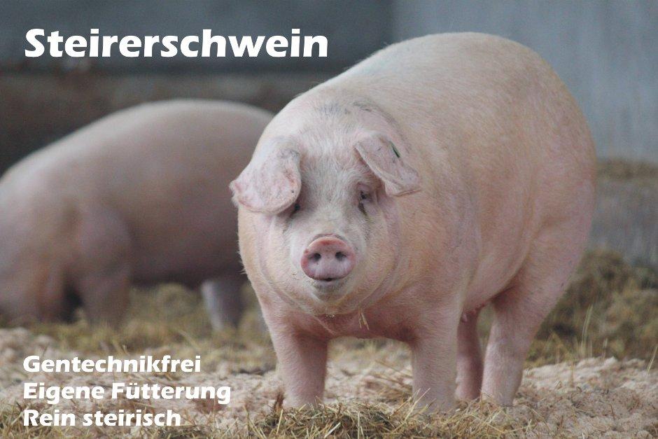 Steirerschwein